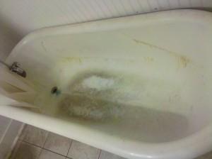 Worst bathtub - 2014